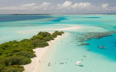 Stu's Stew – It's Better in the Bahamas